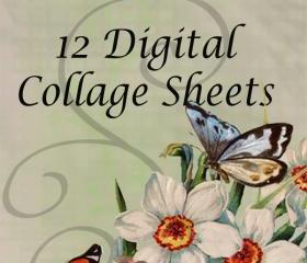 Digital Collage Sheet - Clip Art Elements- Digital Scrapbooking-Best Deal- Choose 12 Collage Sheets