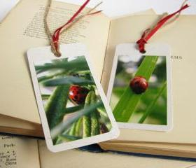 Lovely Ladybirds gift tag bookmarks