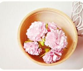 Pink Carnation flowers / pack