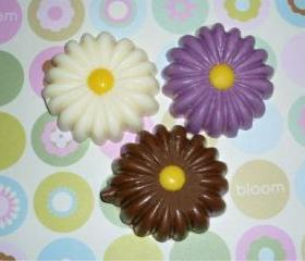 Chocolate Shaped Spring Daisy Flower Set of 12