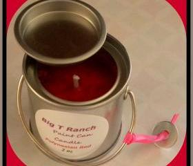 Soy Candle - Paint can - Polynesian Red scented - 2 oz