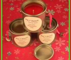 Candle - Paint Can Soy Candle - Juicy Watermelon scented - 2 oz