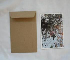 A6 set of 50 Brown Kraft envelopes size 4.5 inch X7 inch for photo envelope or postcard