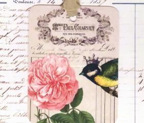 Tags French Crowned Bird and Rose