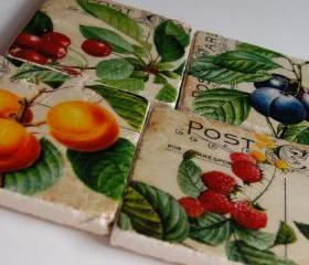 Vintage Fruit and Postcards coasters