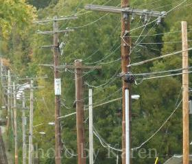 Telephone Poles 5 x 7 Original Photograph, other sizes available