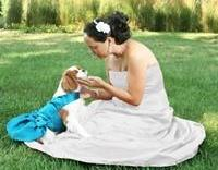 Custom Wedding Dog Dresses