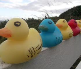 Rubber Duck Soap - any colour: Blue, Red, Pink, Orange, Green or Yellow