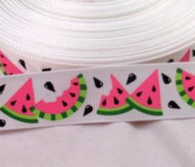 3 Yards 7/8' Watermelon Grosgrain Ribbon