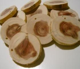 20 Cedar Tree Branch Slices Drilled DIY Wedding