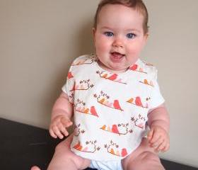 baby bib birds mandarin pink coral orange minky cotton infant newborn drooler