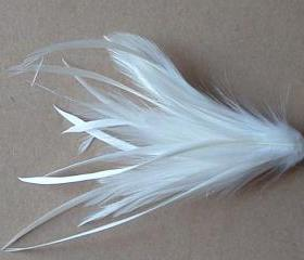 Hackle and Biot Feather Pick - White