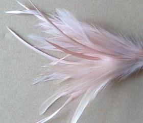 Heckle and Biot Feather Pick - Nude