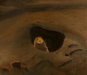 Animal Art, Prairie Dog, Brown Landscape Original Painting
