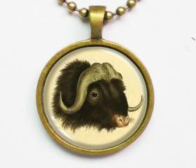 Animal Illustration Necklace - Wild Cattle Bos Mofchatus Penn.- Altered Vintage Illustration Art