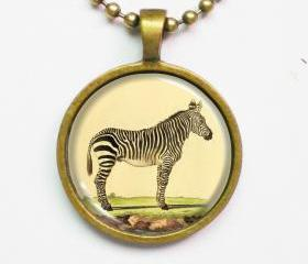 Zebra Necklace - Vintage Animal Illustration of Zebra- Altered Art Vintage Illustration