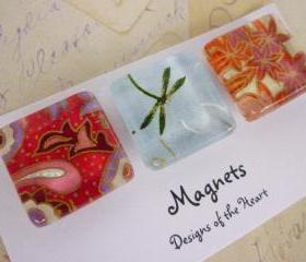 Square Glass Magnet set - Flowers and Dragon Flies