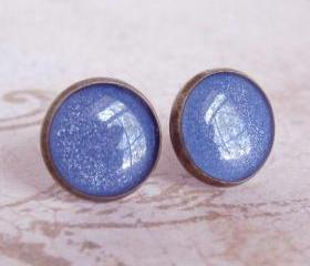 Stud Earrings, Resin Post Earrings, Fake Plug Earrings - BLUEBERRY