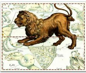 Zodiac Sign Leo Constellation, vintage celestial map printed on parchment paper. Buy 3 and get 1 FREE