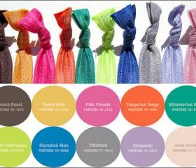 Hair Ties - The Pantone 2012 Fall Collection - Set of 10 - Elastic Hair Ties - Sweet Petites
