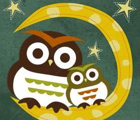 4R Retro Owls on Moon 6x6 Print