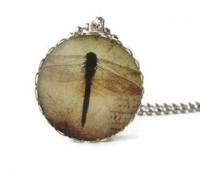 Ephemera Dragonfly 1 inch Glass Pendant Sepia Black Brown