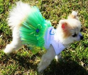 TuTu Seaside Wedding Dog Clothes