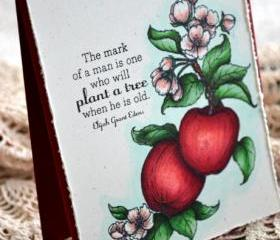 Hand-coloured Apple Greeting Card