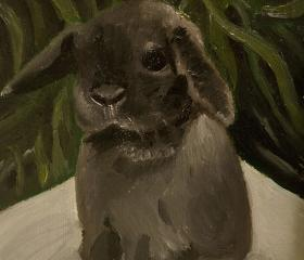 Bunny Rabbit Mini Lop Fine Art Print - 'Baby goes on a picnic'
