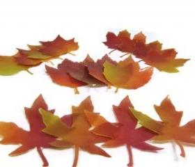 Designer Fall Leaf Soap Single Use Set of 16