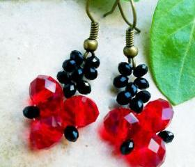 Beadwork crystal earrings- choose yours color