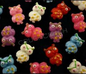 50pcs Little Cute Angry Owl Big Eyes Flat Back Cabochons F602