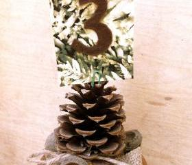 Wedding card table holders pine cones