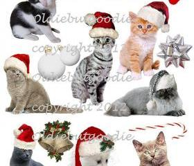 Jingle Cats Christmas 2