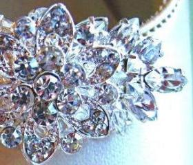 Wedding Accessories,Shoe Clips, Vintage Style,Crystal Shoe Clips, Flower Clips, Floral Ice Collection