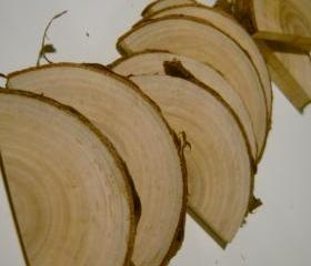 5 Wooden Half Rounds Tree Branch Half Circle Blanks