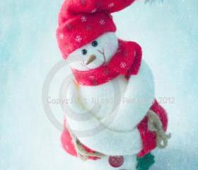 Mr SnowMan 