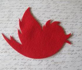 Twitte twitte ... lovely red bird