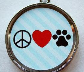 PLPaw Pet ID Tag