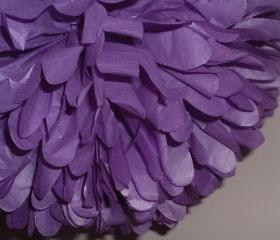 Set of 10 tissue paper poms