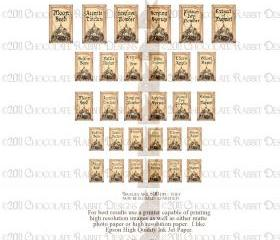 Miniature Dollhouse Halloween Potion Bottle Labels Digital Download 500 dpi - Twelve labels