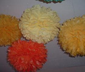 3 Tissue paper pom. Party decorations