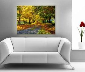 15x11 Digital printed Canvas autumn wood to your wall, nature colorful autumn trees photo (size: 15x11 inch plus border).