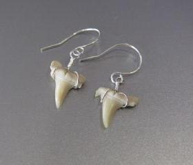 Sterling Silver Wire Wrapped Shark's Tooth Earrings, Sterling Silver Shark Tooth Dangle Earring, Silver Earrings