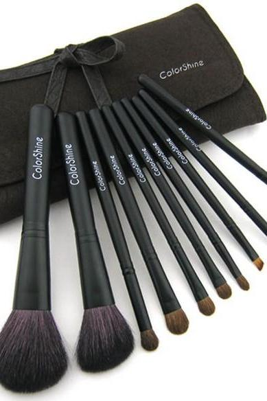 Color Shine High Quality Natural Wool Goat hair 10Pcs Profession Cosmetic Beauty Makeup Brush Set
