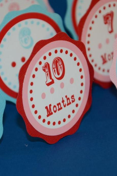 First Year Photo Clips, First Year Banner, Circus Birthday Party, Red, Light Blue Turquoise and Pink Theme