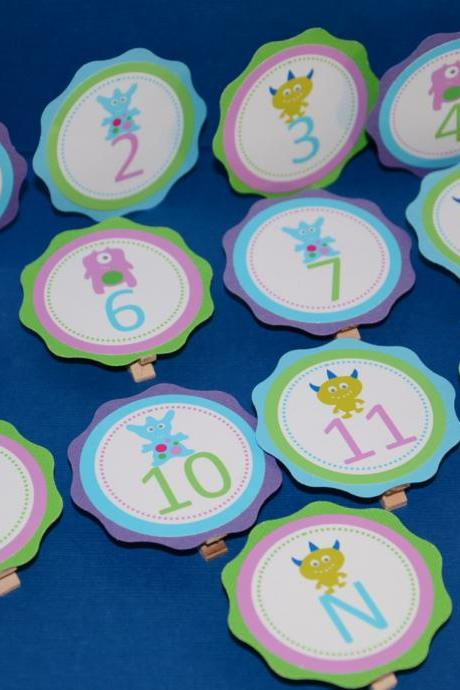 First Year Photo Small Clips, First Year Banner, Birthday Party, Purple, Turquoise and Lime Green Monster Theme