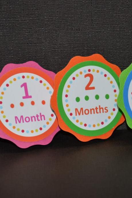 Polka Dots, First Year Photo Clips, First Year Banner, Birthday Party, Any Theme