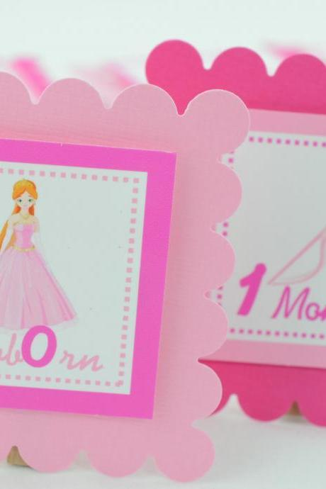 First Year Photo Mini Clips, First Year Banner, Princess Birthday Party, Any Theme, Pink and Hot Pink