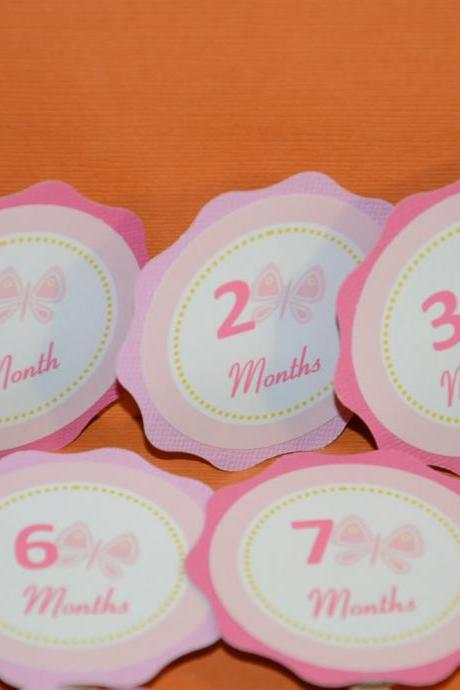First Year Photo Small Clips, First Year Banner, Butterfly Birthday Party, Hot pink and Pink Theme